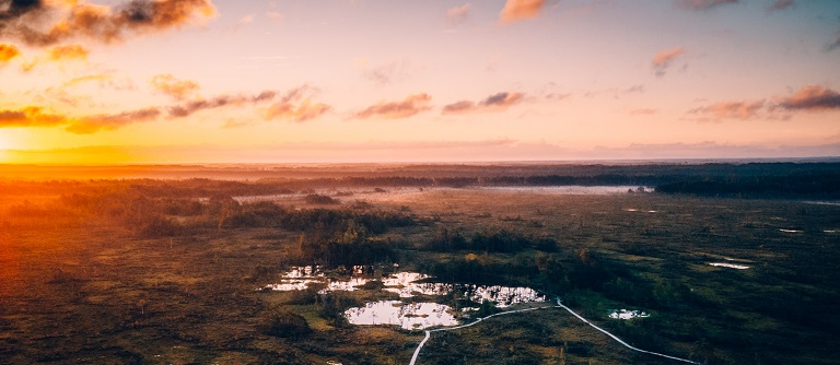 Igaunijas tūrisms